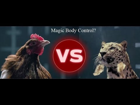 Hilarious Mercedes Benz Amp Jaguar Advertisement Rivalry