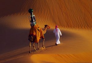 640x440xstreetview-camel.jpg.pagespeed.ic.rcTmLWISBj