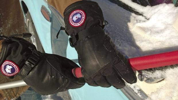 goose+gloves+1